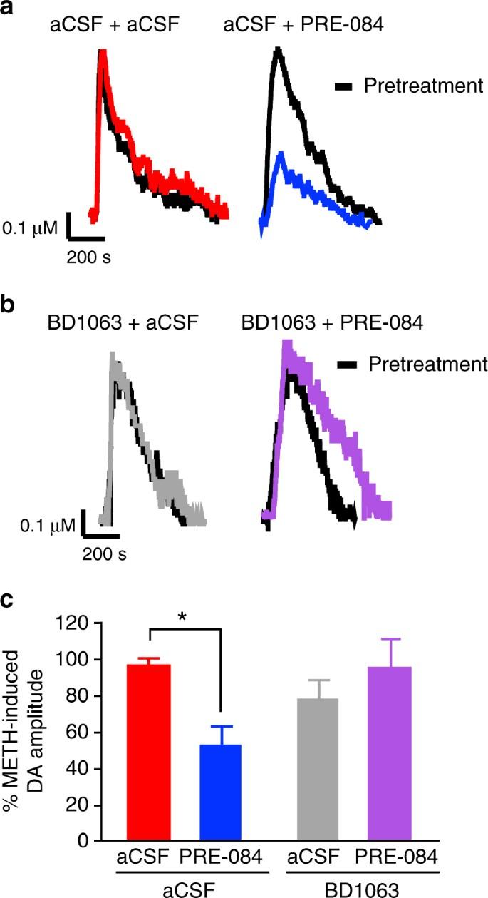 The sigma-1 receptor modulates methamphetamine dysregulation of