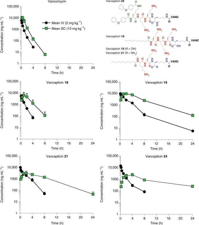 Protein-inspired antibiotics active against vancomycin- and