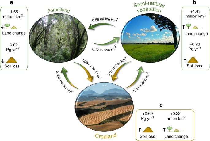 An assessment of the global impact of 21st century land use