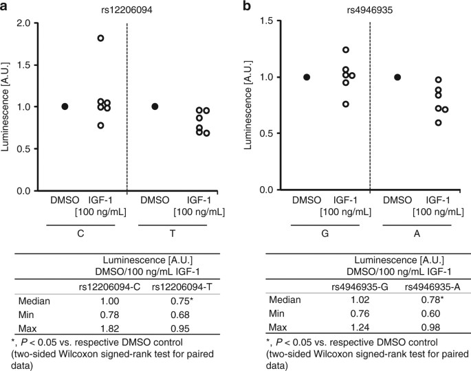 Identification and characterization of two functional