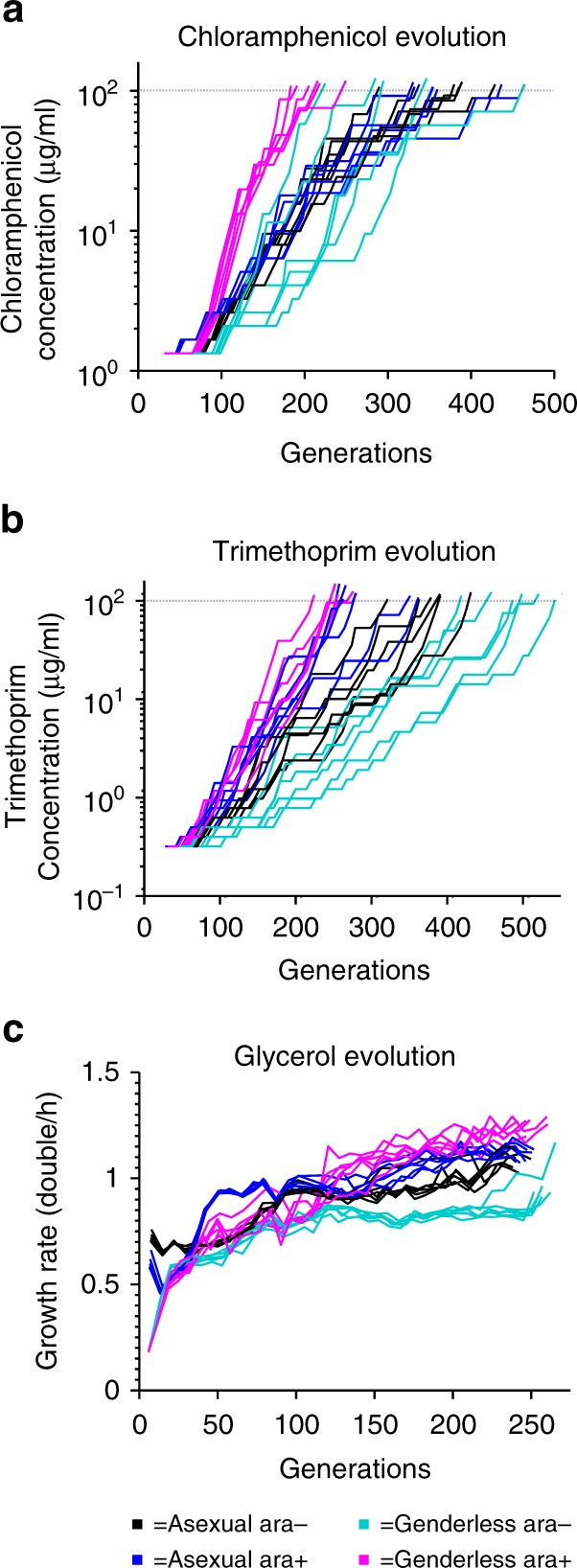 Sexual recombination and increased mutation rate expedite evolution