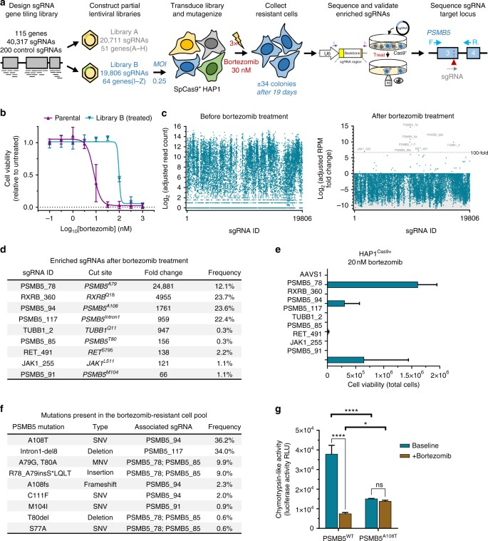 Target Identification Of Small Molecules Using Large Scale Crispr