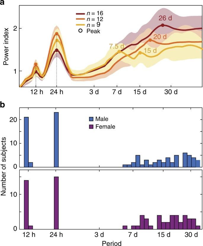 Multi-day rhythms modulate seizure risk in epilepsy | Nature