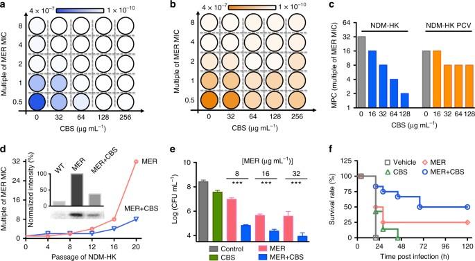 Bismuth antimicrobial drugs serve as broad-spectrum metallo