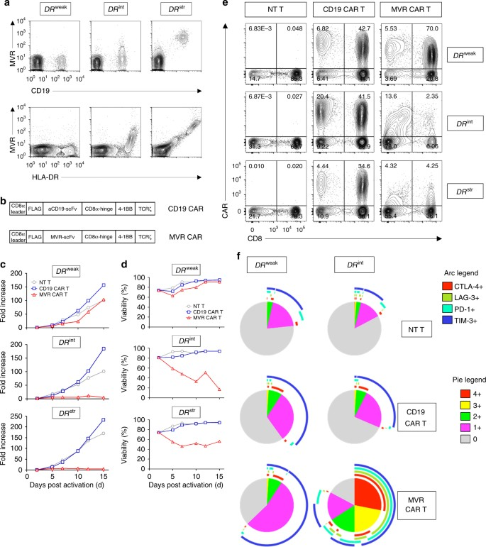 Desensitized chimeric antigen receptor T cells selectively