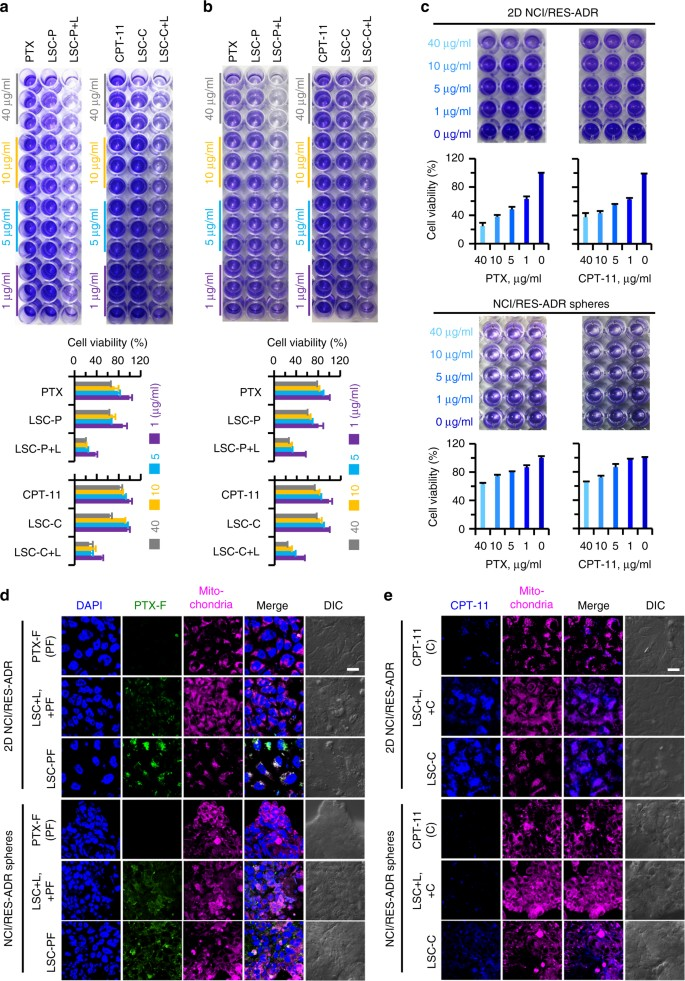 Targeted production of reactive oxygen species in