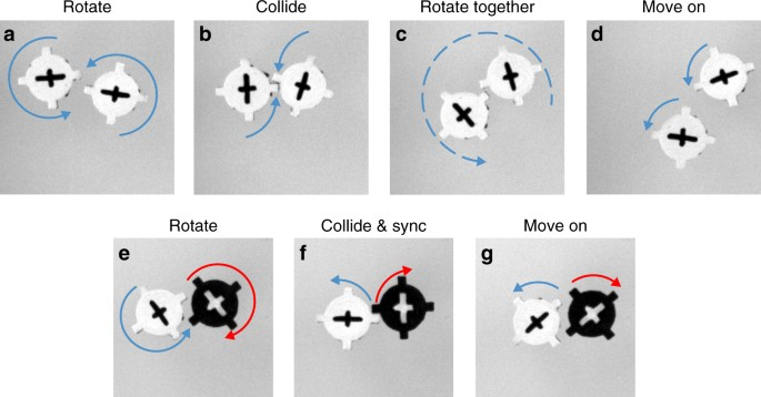 Rotating robots move collectively and self-organize   Nature