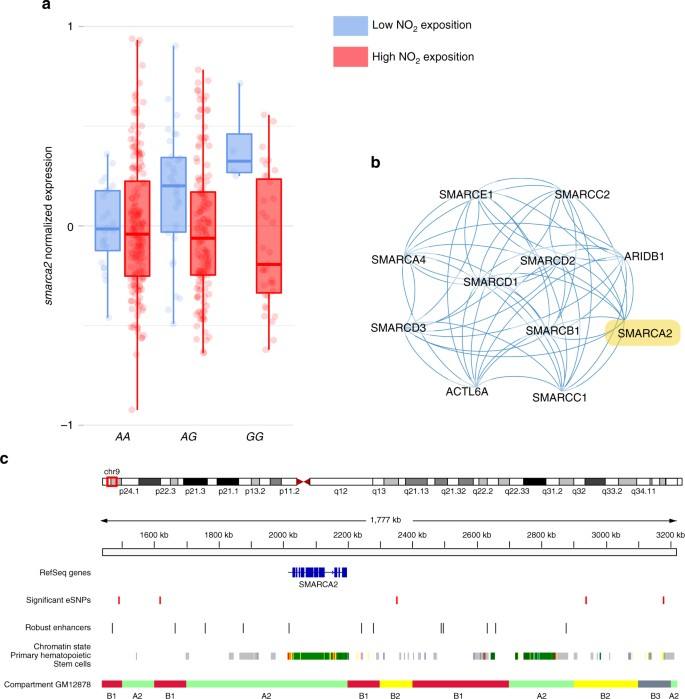 Gene-by-environment interactions in urban populations