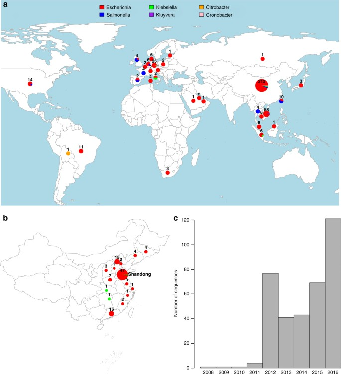 The global distribution and spread of the mobilized colistin