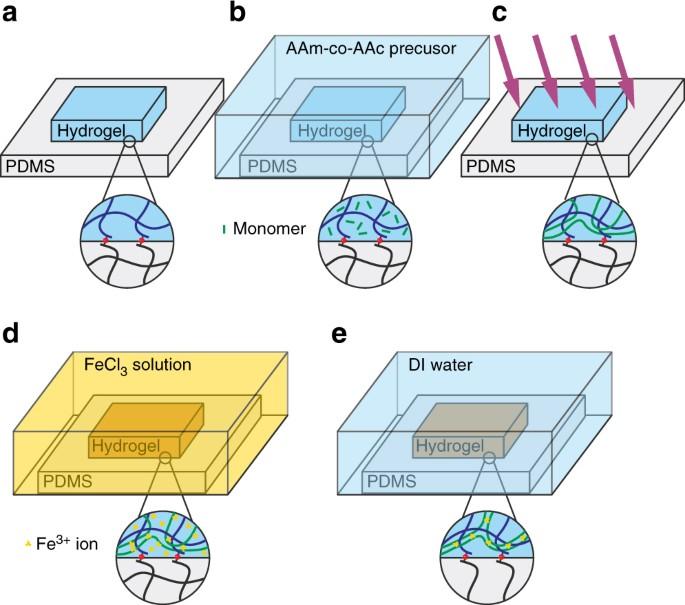 Bonding dissimilar polymer networks in various manufacturing