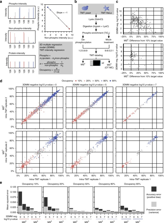 Benchmarking common quantification strategies for large-scale