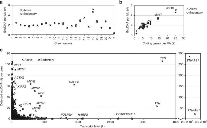 Circular DNA elements of chromosomal origin are common in healthy