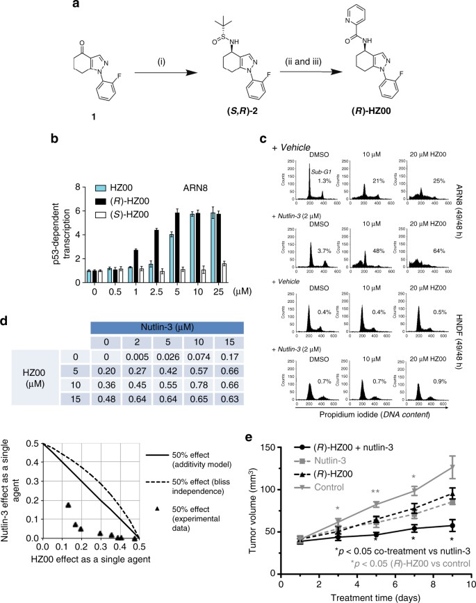 A DHODH inhibitor increases p53 synthesis and enhances tumor cell
