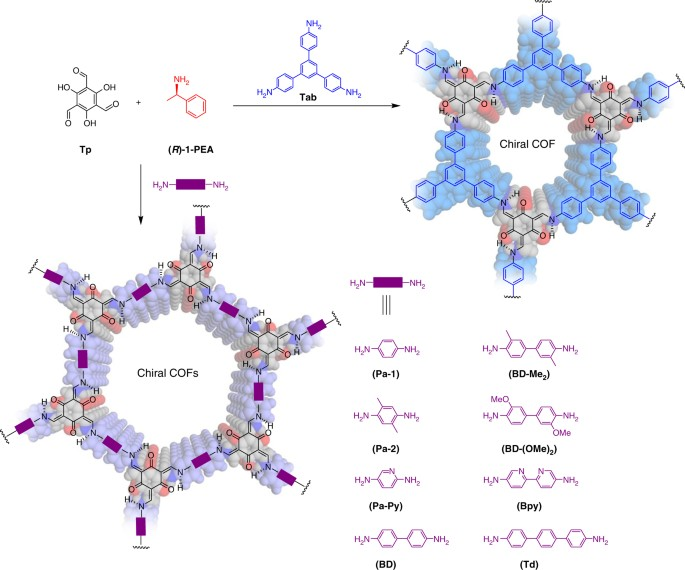 Chiral induction in covalent organic frameworks | Nature Communications