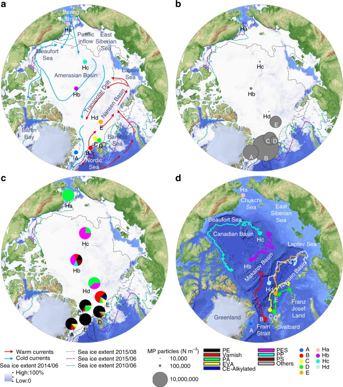 Arctic sea ice is an important temporal sink and means of transport