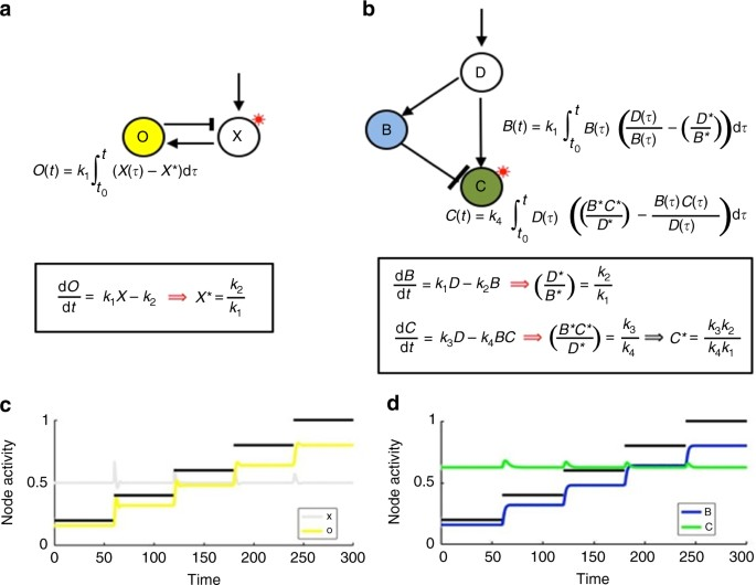 The topological requirements for robust perfect adaptation