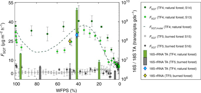 Strong sesquiterpene emissions from Amazonian soils | Nature