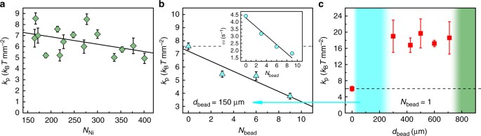 Manipulation of emergent vortices in swarms of magnetic