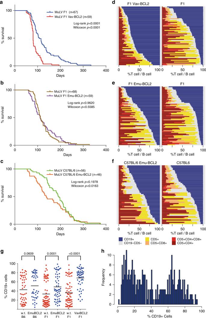 Subclonal mutation selection in mouse lymphomagenesis identifies