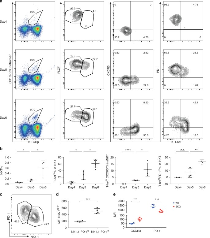 Altered thymic differentiation and modulation of arthritis