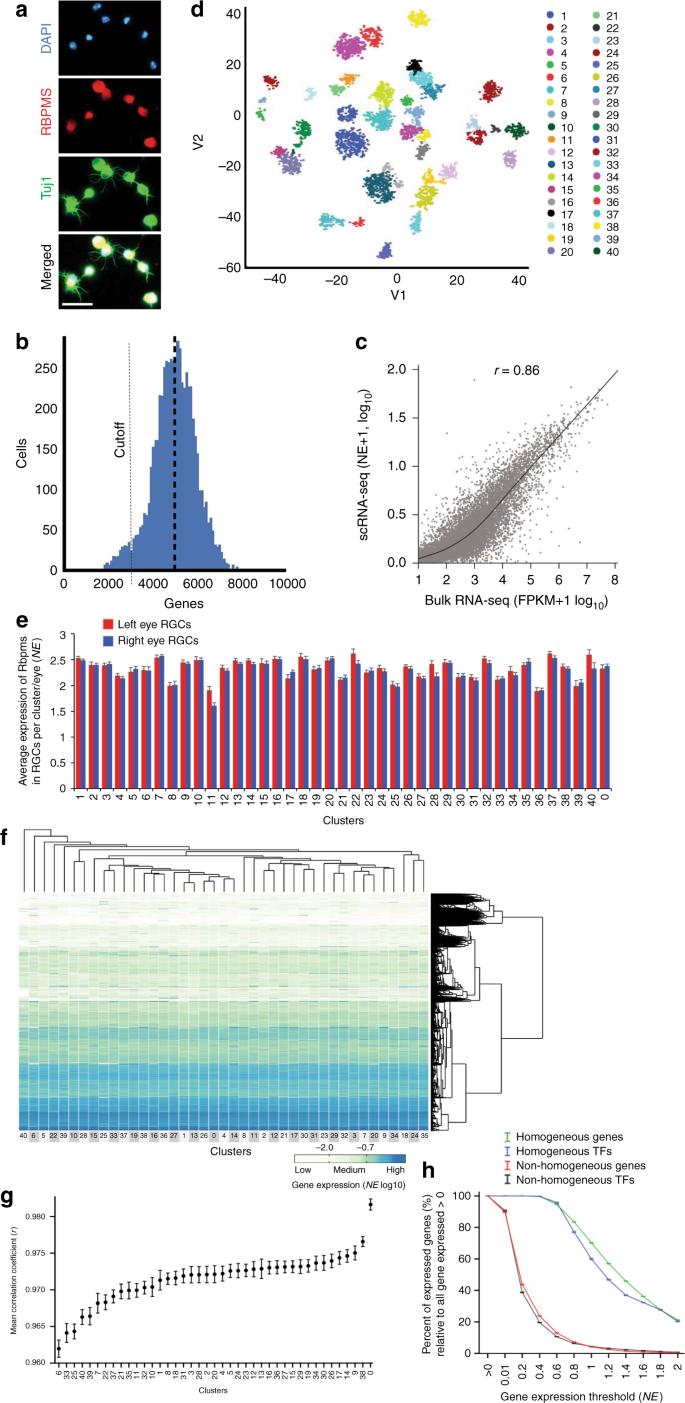 Single cell transcriptome profiling of retinal ganglion cells