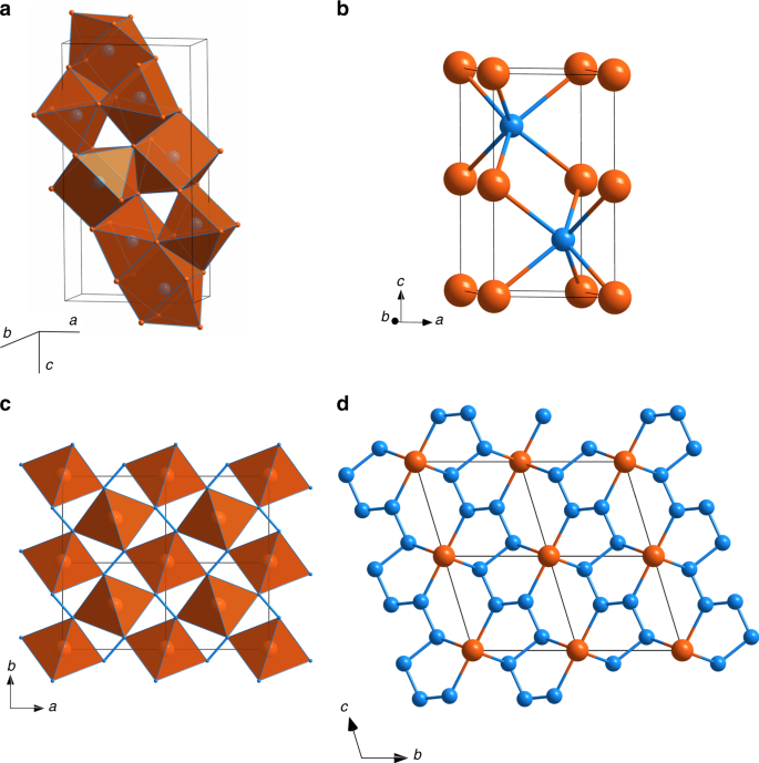 Fe-N system at high pressure reveals a compound featuring