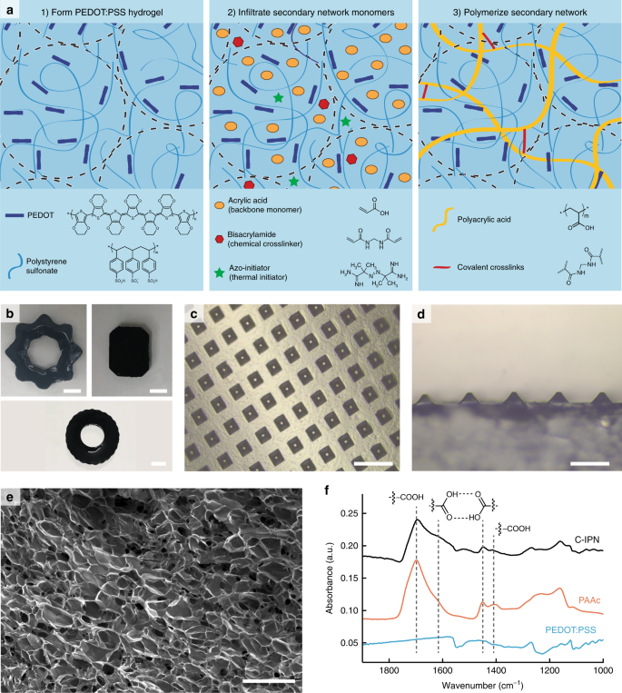 Mechanically tunable conductive interpenetrating network hydrogels