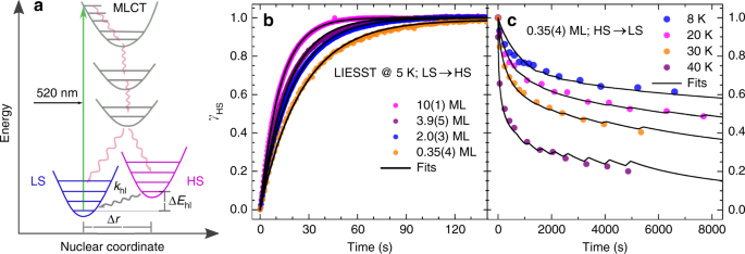 Evolution of cooperativity in the spin transition of an iron