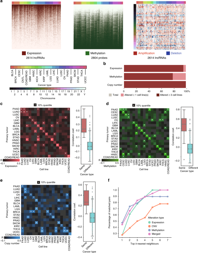 Systematic identification of non-coding pharmacogenomic landscape in