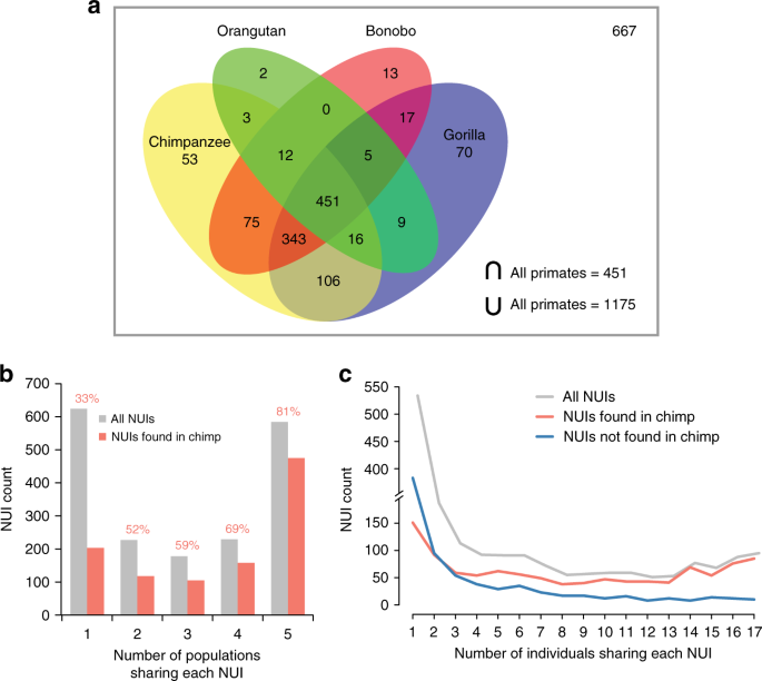 De novo human genome assemblies reveal spectrum of