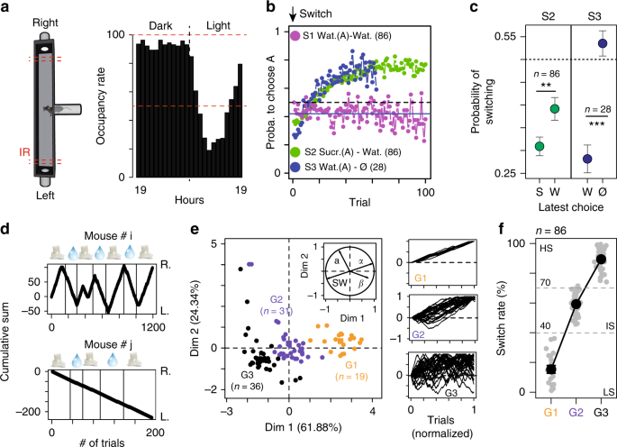 Social interactions impact on the dopaminergic system and drive