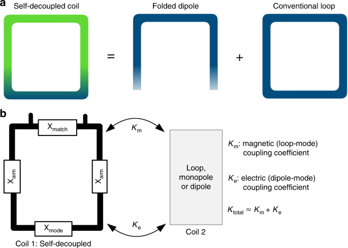 Self-decoupled radiofrequency coils for magnetic resonance