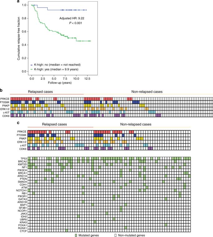 In vivo phosphoproteomics reveals kinase activity profiles