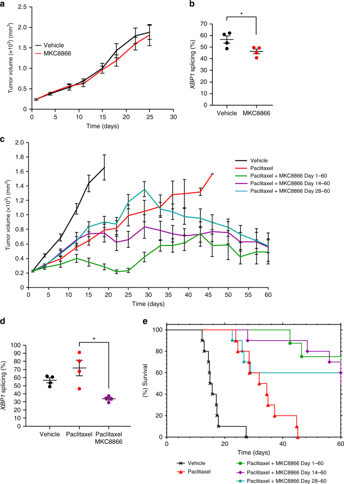 Inhibition of IRE1 RNase activity modulates the tumor cell secretome