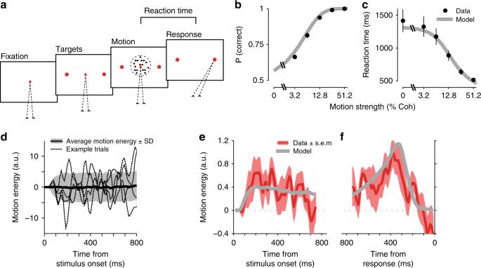 Psychophysical reverse correlation reflects both sensory and