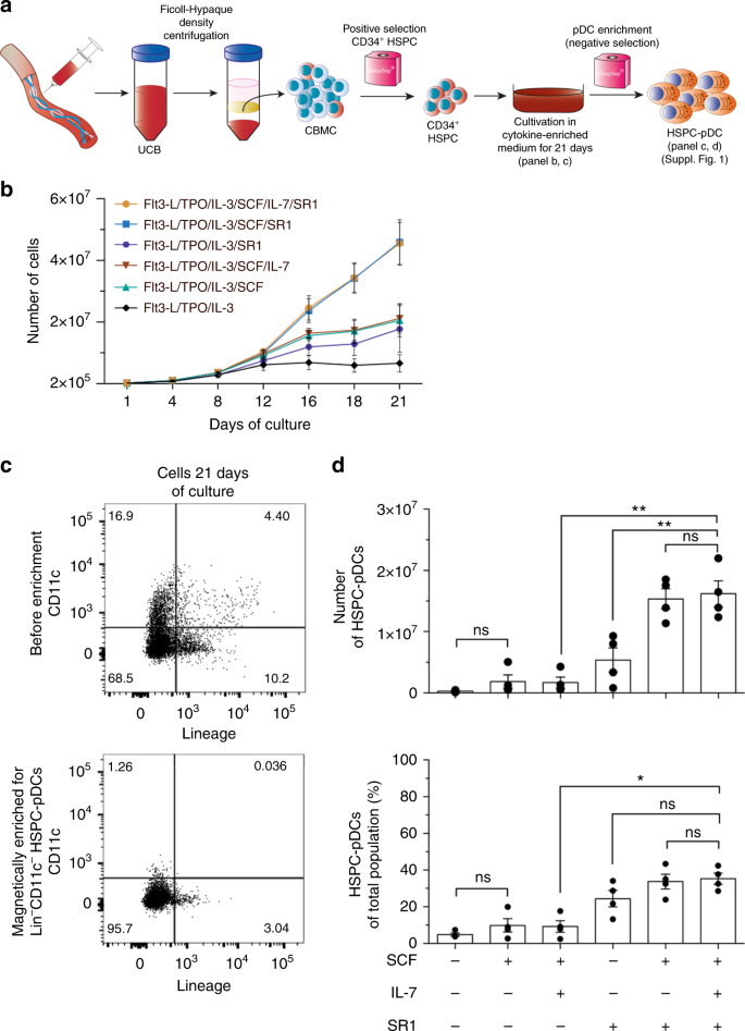 Interferon priming is essential for human CD34+ cell-derived
