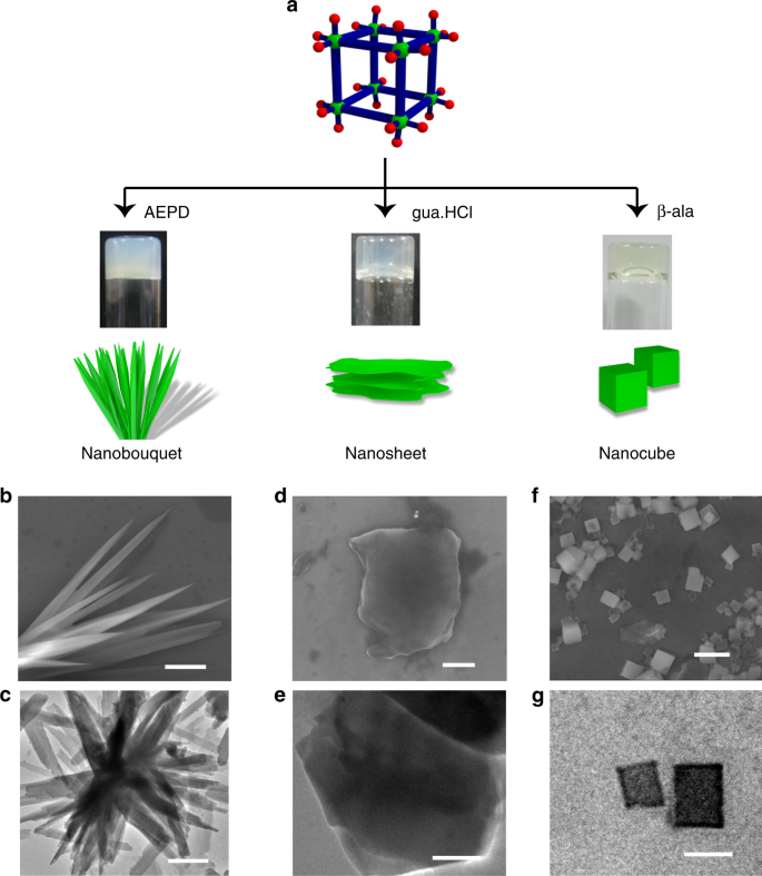 Binder driven self-assembly of metal-organic cubes towards