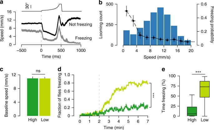 Speed dependent descending control of freezing behavior in