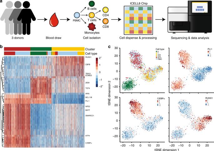High-throughput chromatin accessibility profiling at single-cell