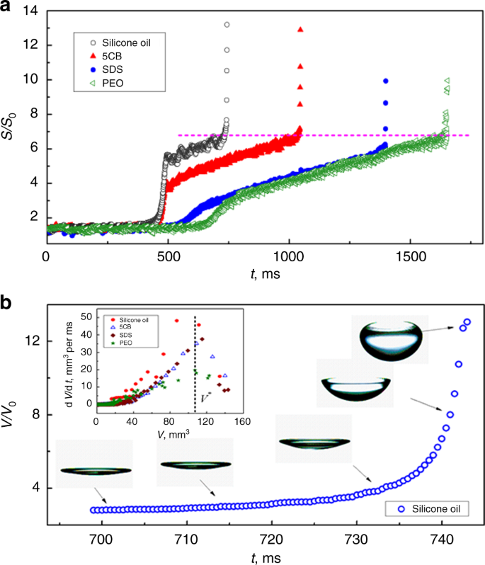 Inducing drop to bubble transformation via resonance in ultrasound