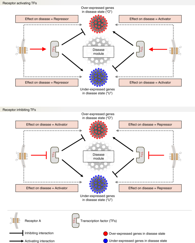 A systems-level framework for drug discovery identifies