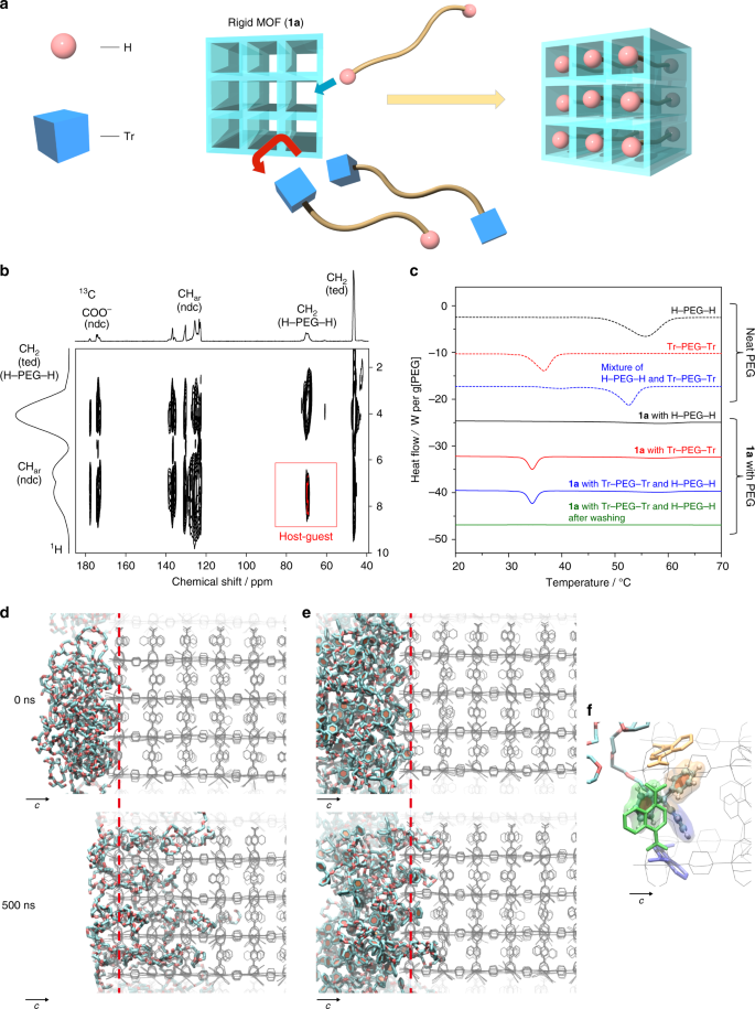 Selective sorting of polymers with different terminal groups