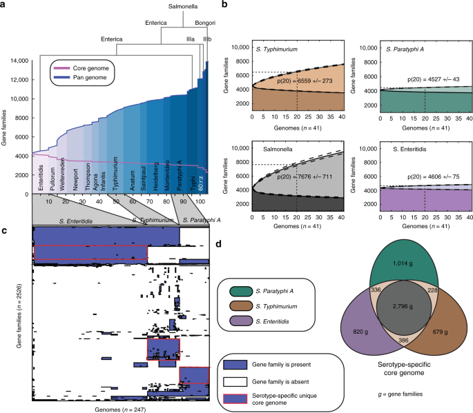 Genome-scale metabolic reconstructions of multiple <i>Salmonella</i> strains reveal serovar-specific metabolic traits