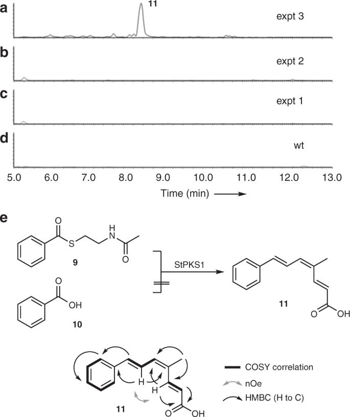 Strobilurin biosynthesis in Basidiomycete fungi | Nature