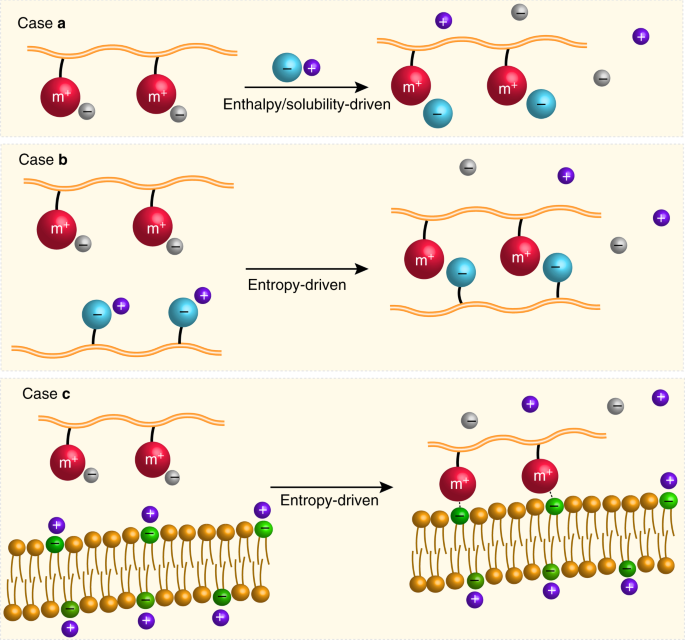 Metallo-polyelectrolytes as a class of ionic macromolecules for