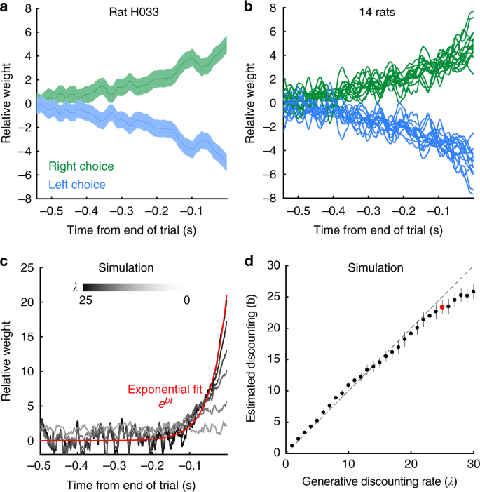Rats adopt the optimal timescale for evidence integration in