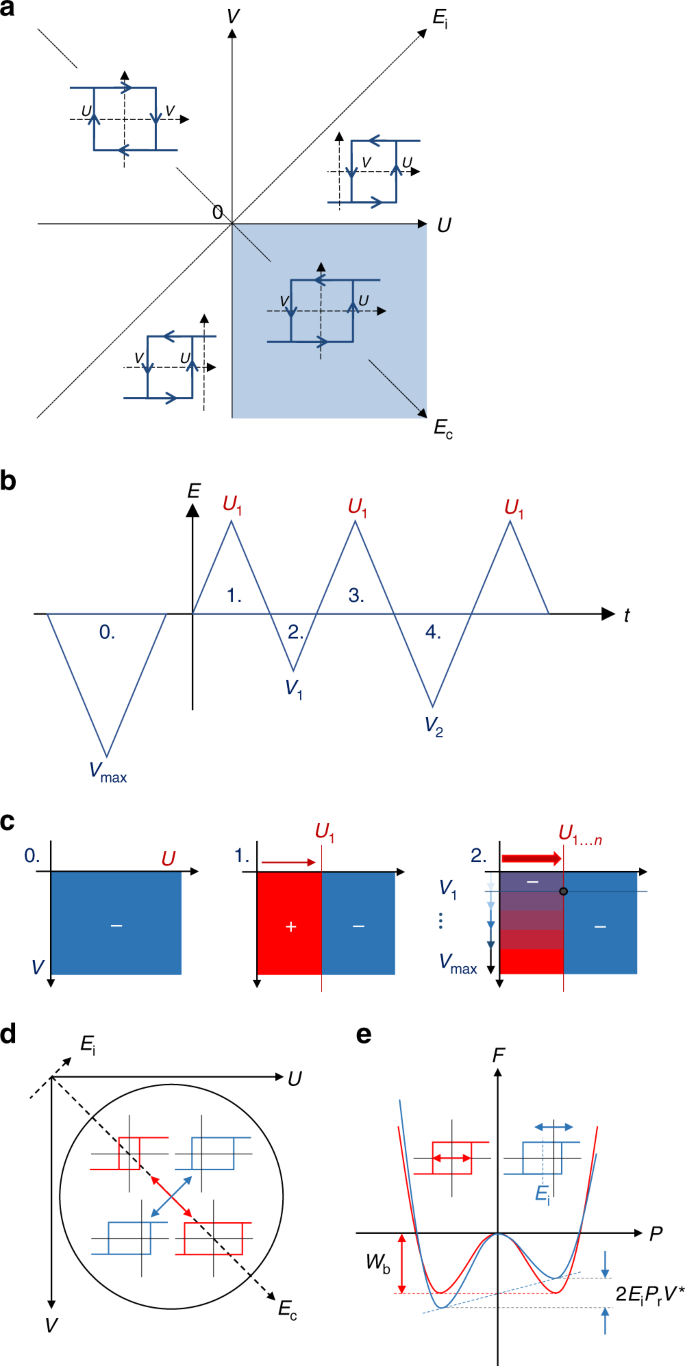 Physical reality of the Preisach model for organic