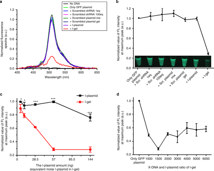 A RNA producing DNA hydrogel as a platform for a high performance