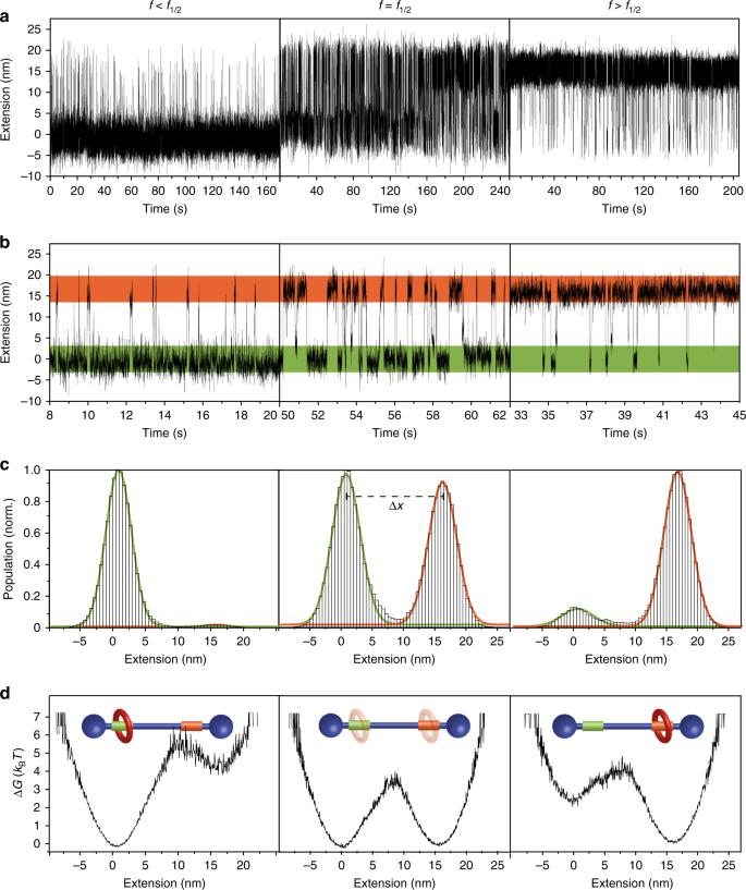 Dynamics of individual molecular shuttles under mechanical
