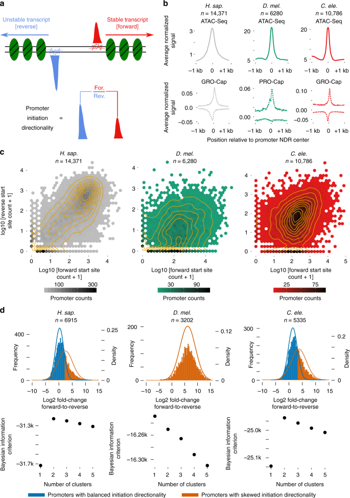 Determinants of promoter and enhancer transcription